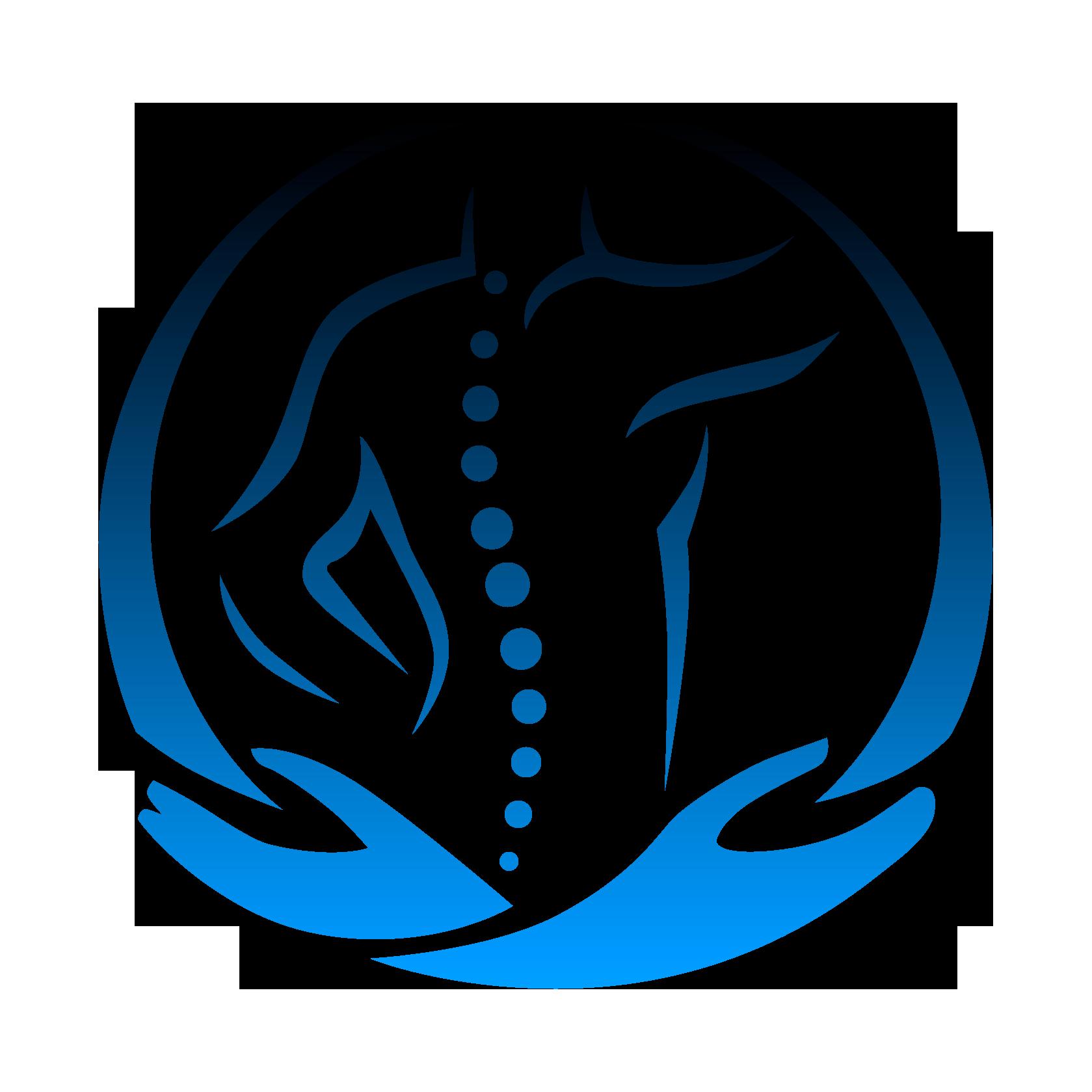 Sistema Schiena Fisioterapia Torbole Casaglia Brescia